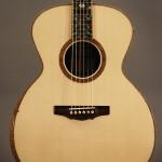 Tippin Bravado Acoustic Guitar